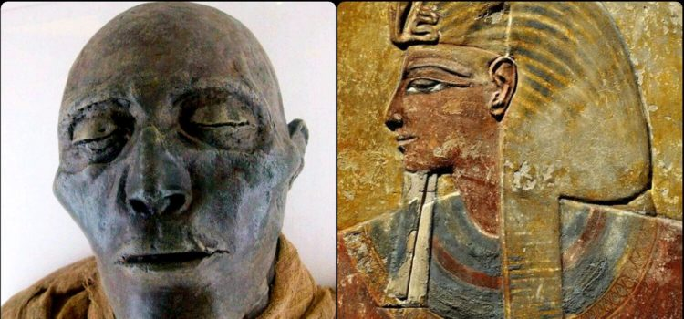 Old Mummified Face Of Egyptian