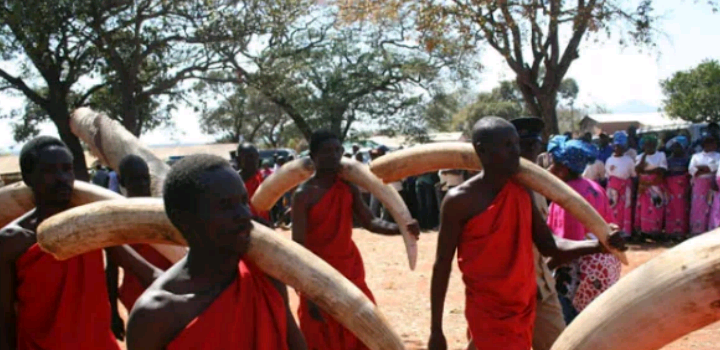 Get To Know The Tribe That Woman Is More Valued - History Of The Chewa People (Nyanja Tribe)