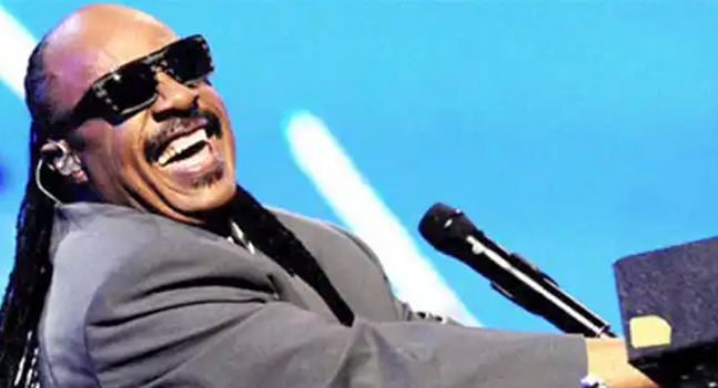 Being Blind Is Not An Excuse - Biography Of Stevie Wonder