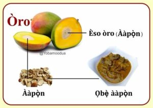 How to get the African mango seed in yoruba